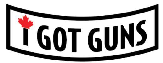 I Got Guns